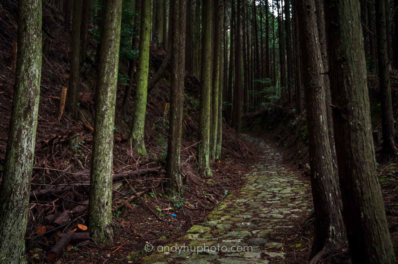 trail-Kumano Kodo Trek