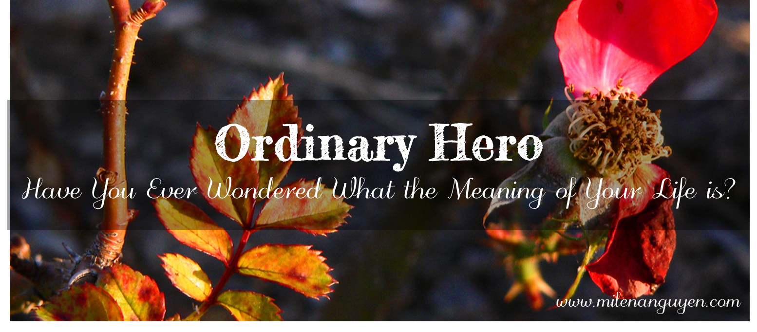 ordinary-hero.png