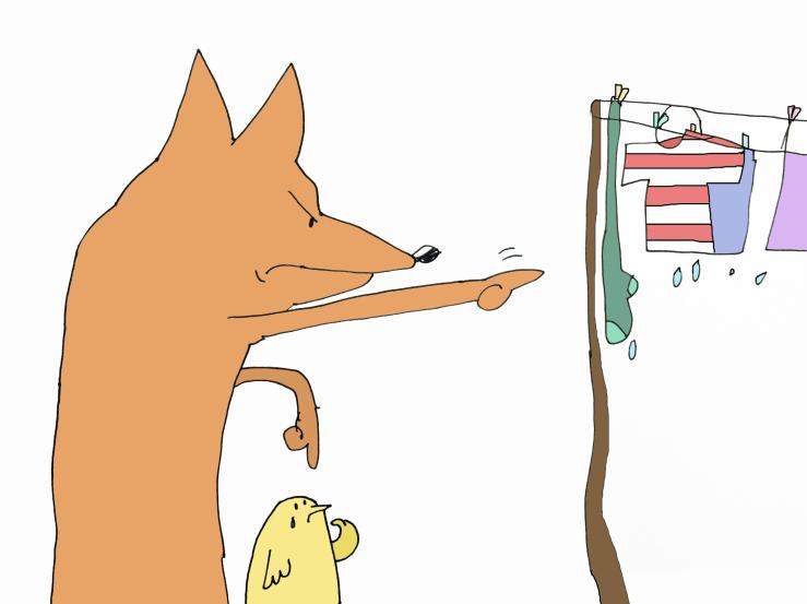 washing fox and chic