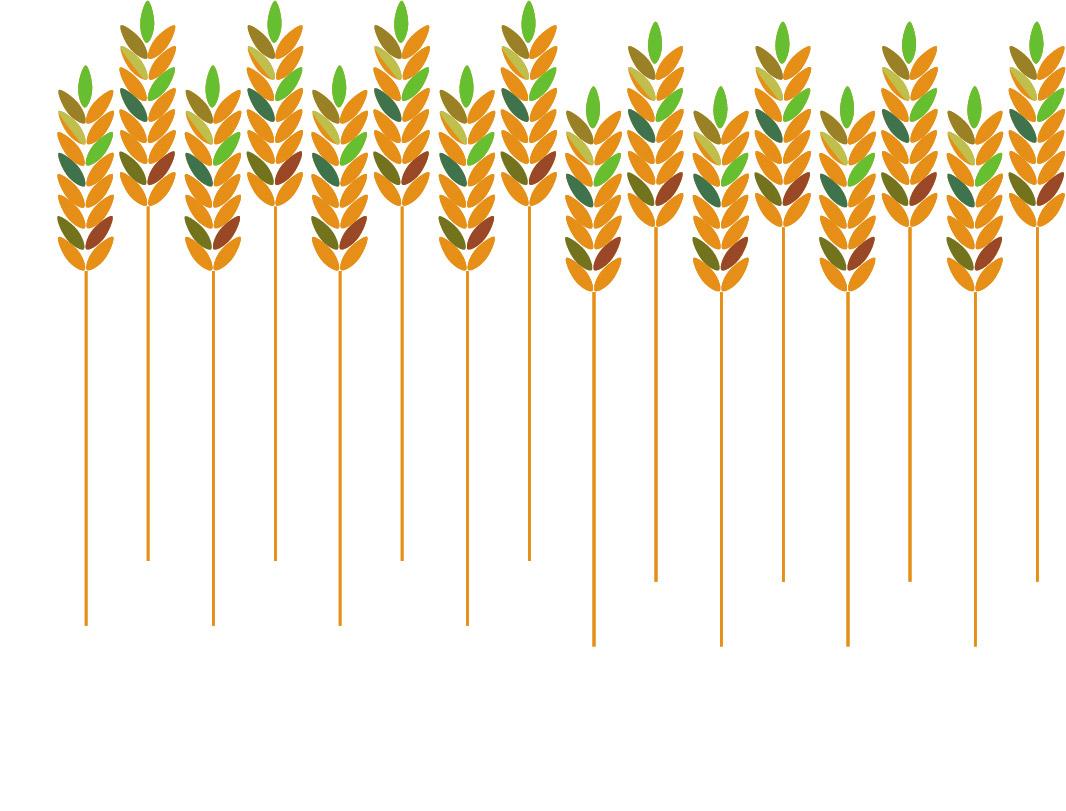 wheatpattern.jpg