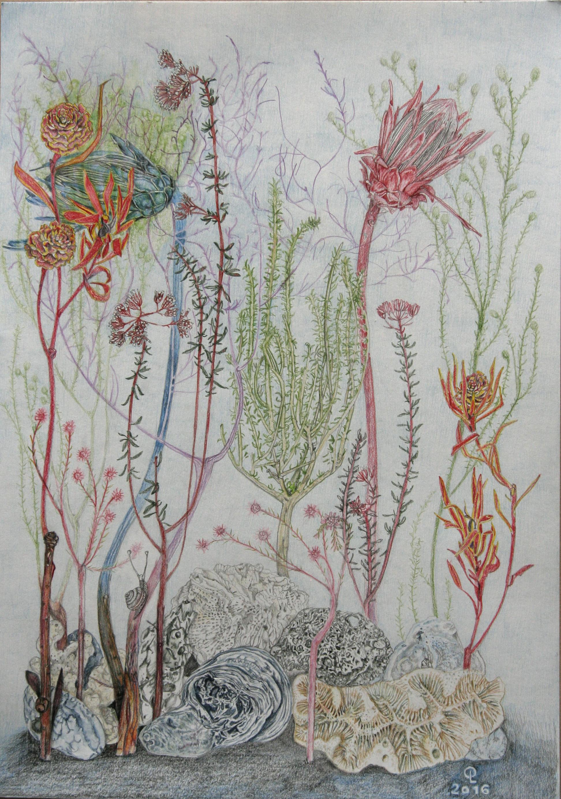 shells_and_flowers.jpg