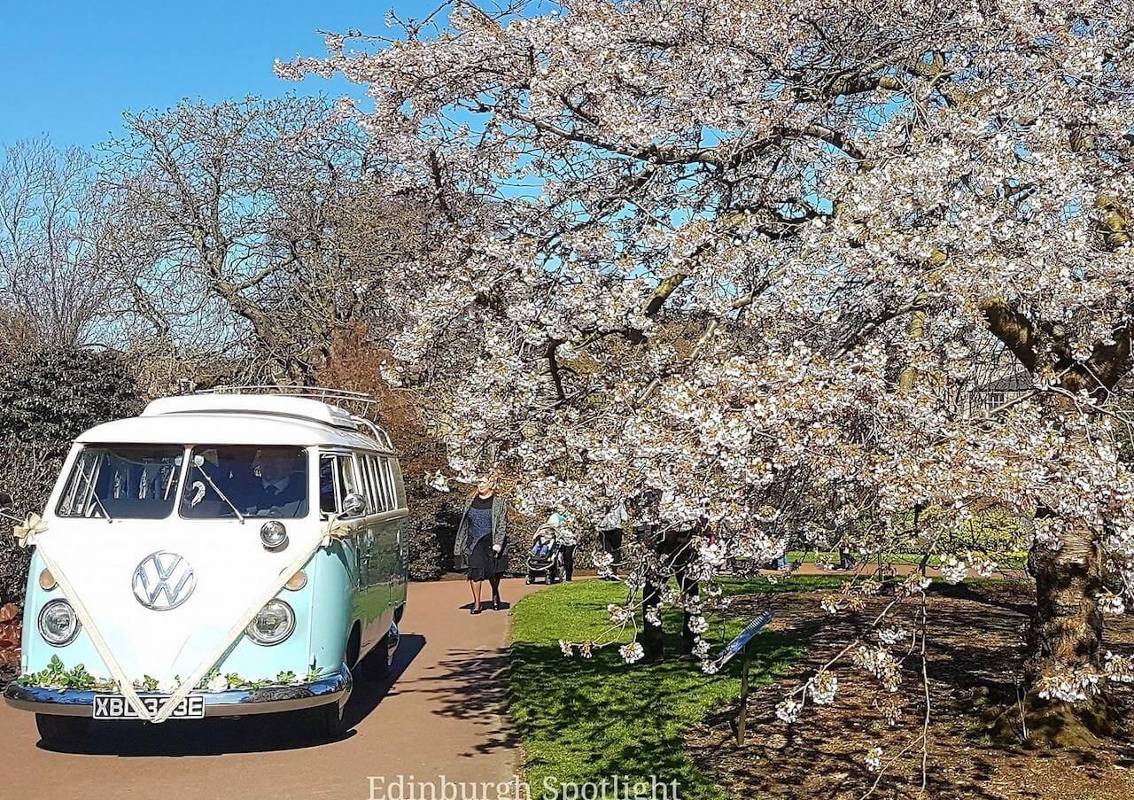 VW-camper-wedding-car-lickety-split-2.jpg