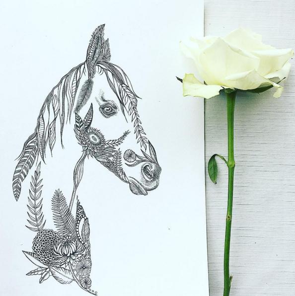 Horse Drawing   Horse Art   Equine Art