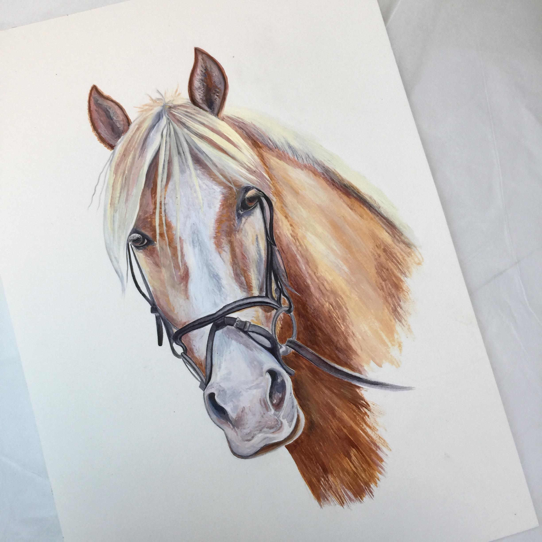 Palomino Horse Art Art Commissions Equine Art Caroline Towning Horse Art Horse Paintings