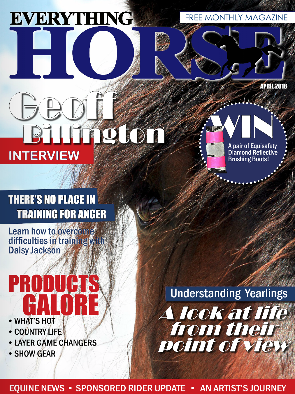 Everything Horse | Equestrian Artist | Press Feature