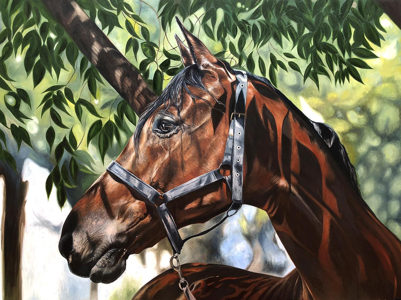 Horse Under Tree   Horse Art   Horse Decor