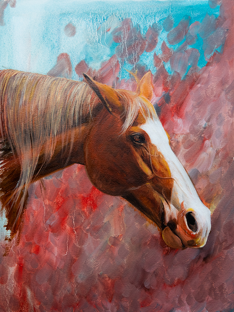 Small Horse Colour Study | Equine Art