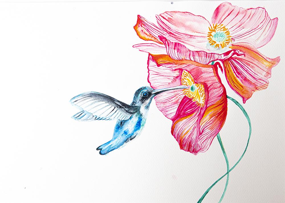 botanical flower and hummingbird