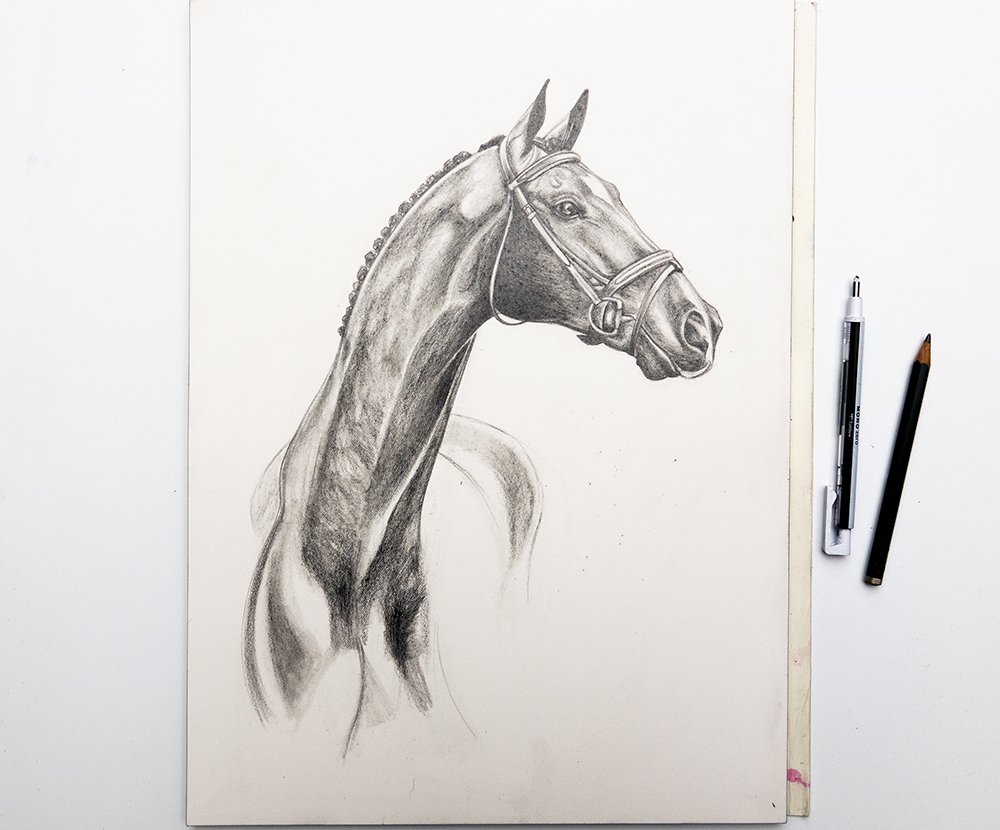 Horse Art | Watercolour Horse