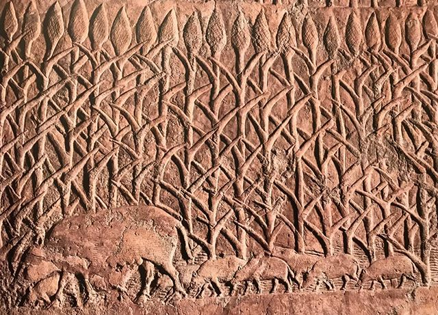 A gorgeous detail from Sennacherib's palace walls. Would make a nice textile pattern...(British Museum 124824, 700-692 BCE) #Mesopotamania