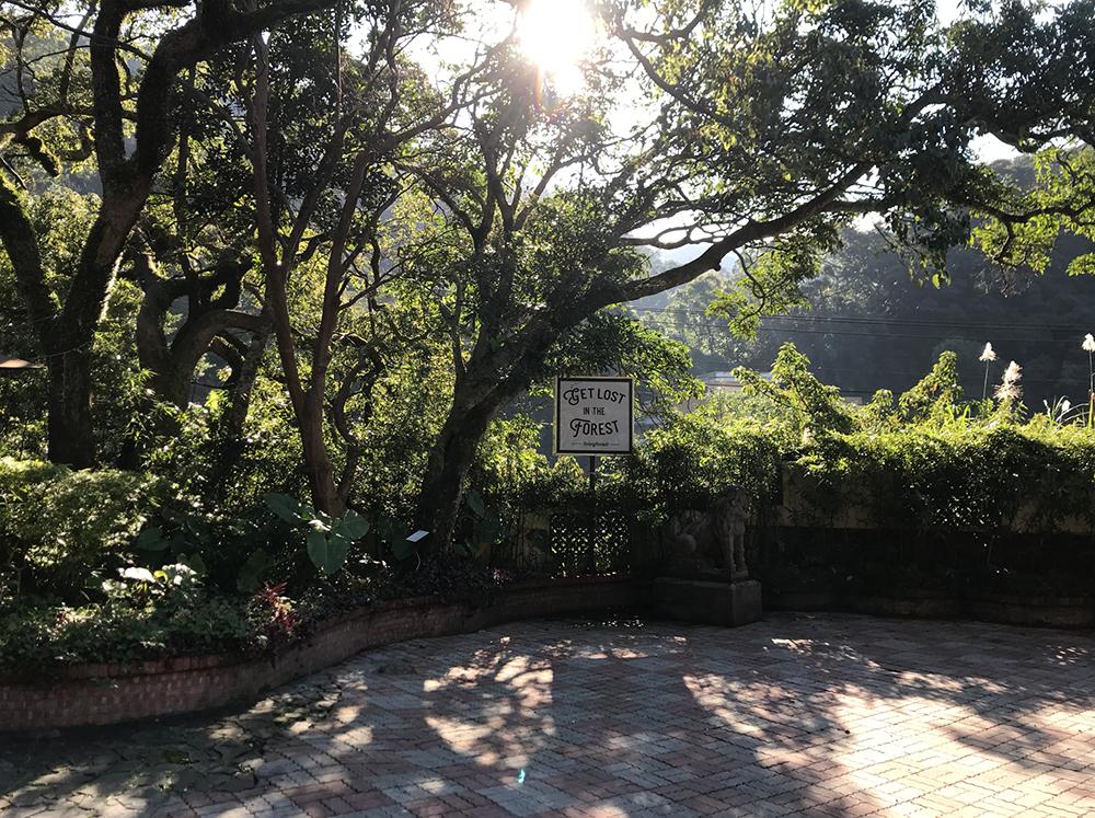 聽雨軒 森林食堂 - 庭園和風料理 Feel the forest