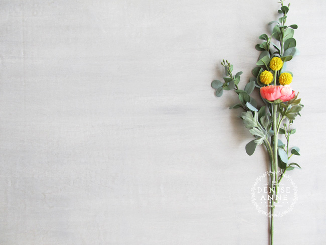 Styled Photography Background Image
