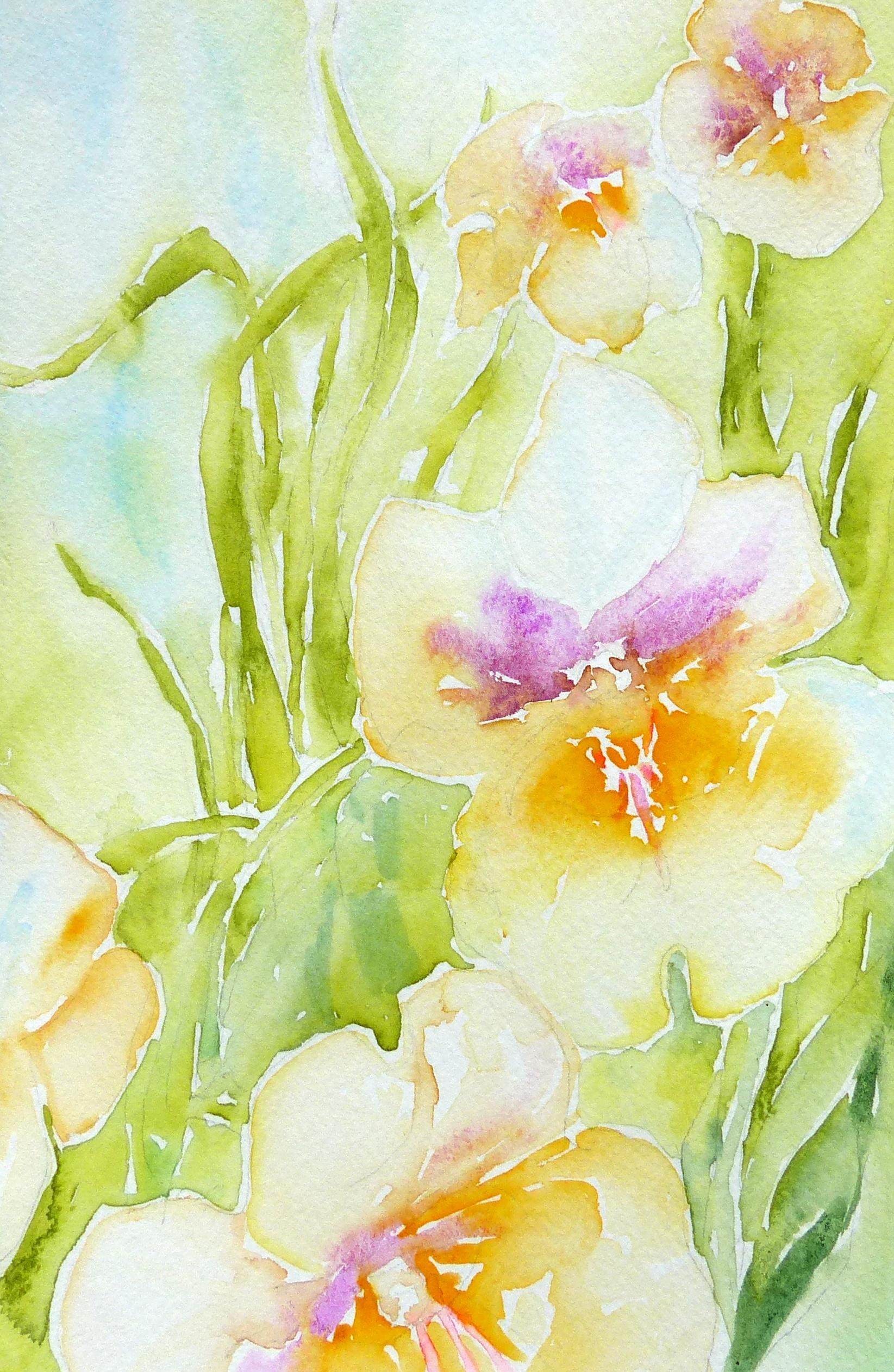 S. Davies, Dreamy Flowers