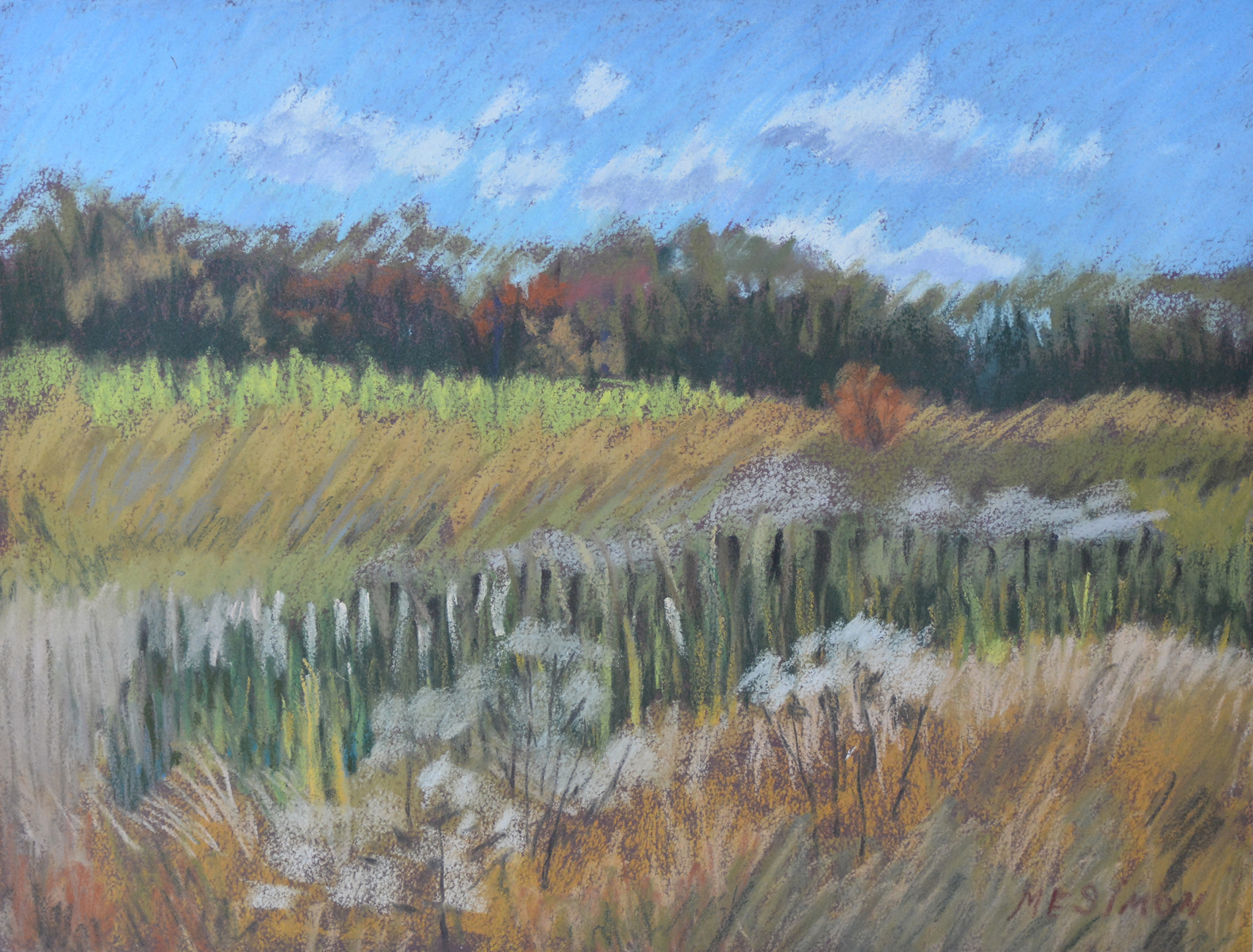 M.E. Simon, Autumn Wetlands