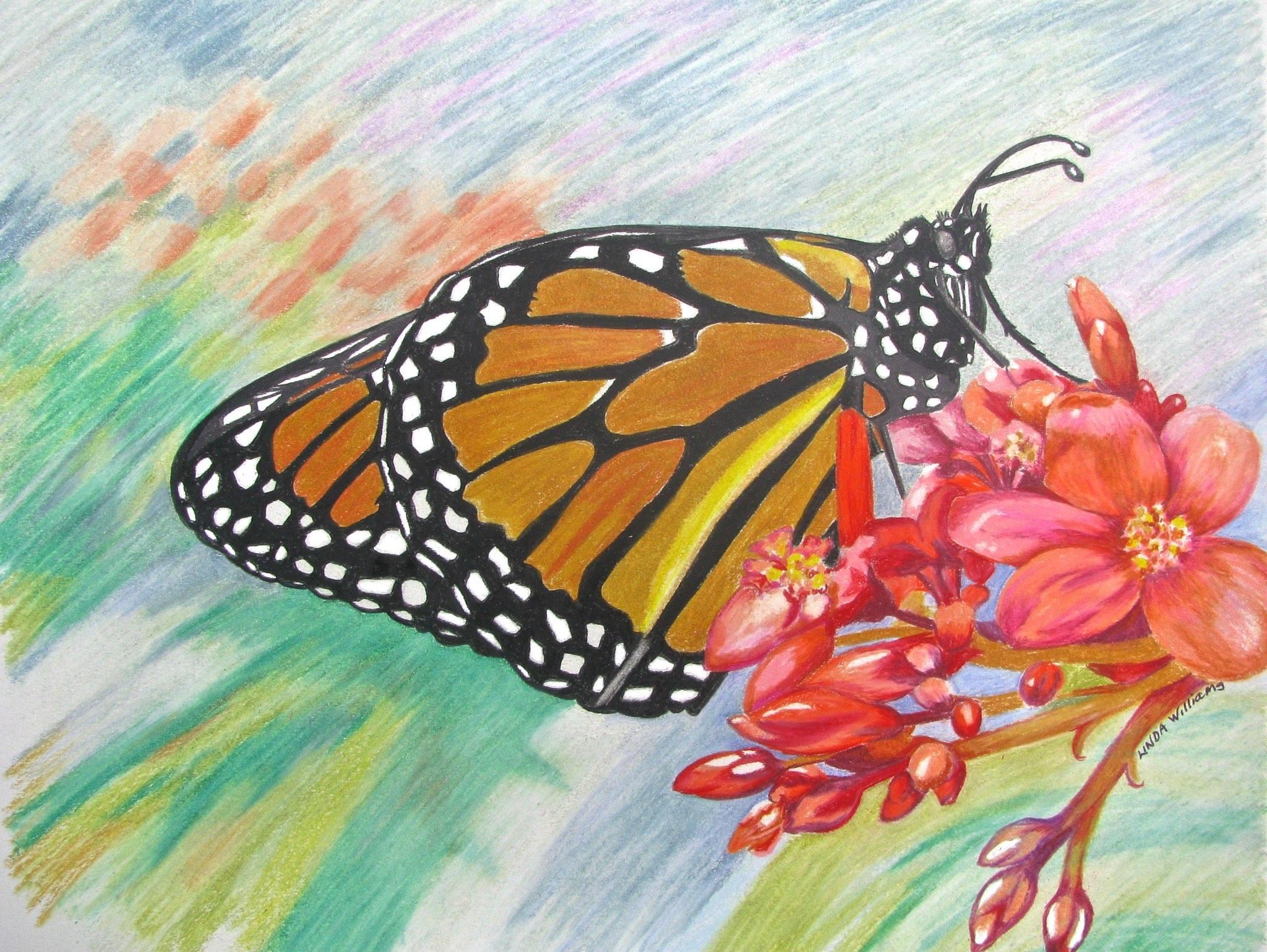 L. Williams, Monarch of Garden
