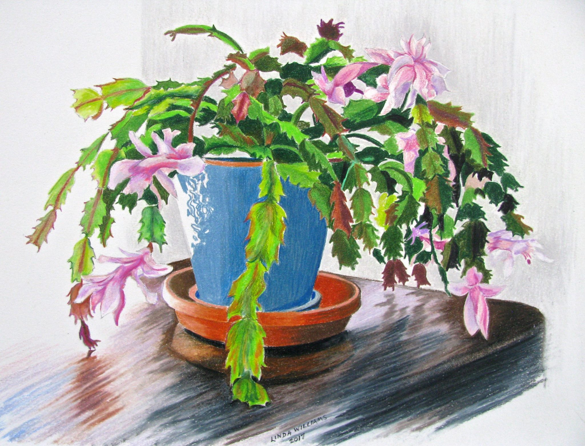 L. Williams, Xmas Cactus