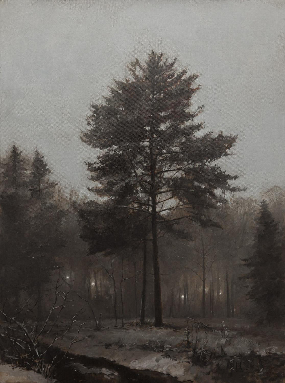 V. Pozhidayev-Eldrich lights
