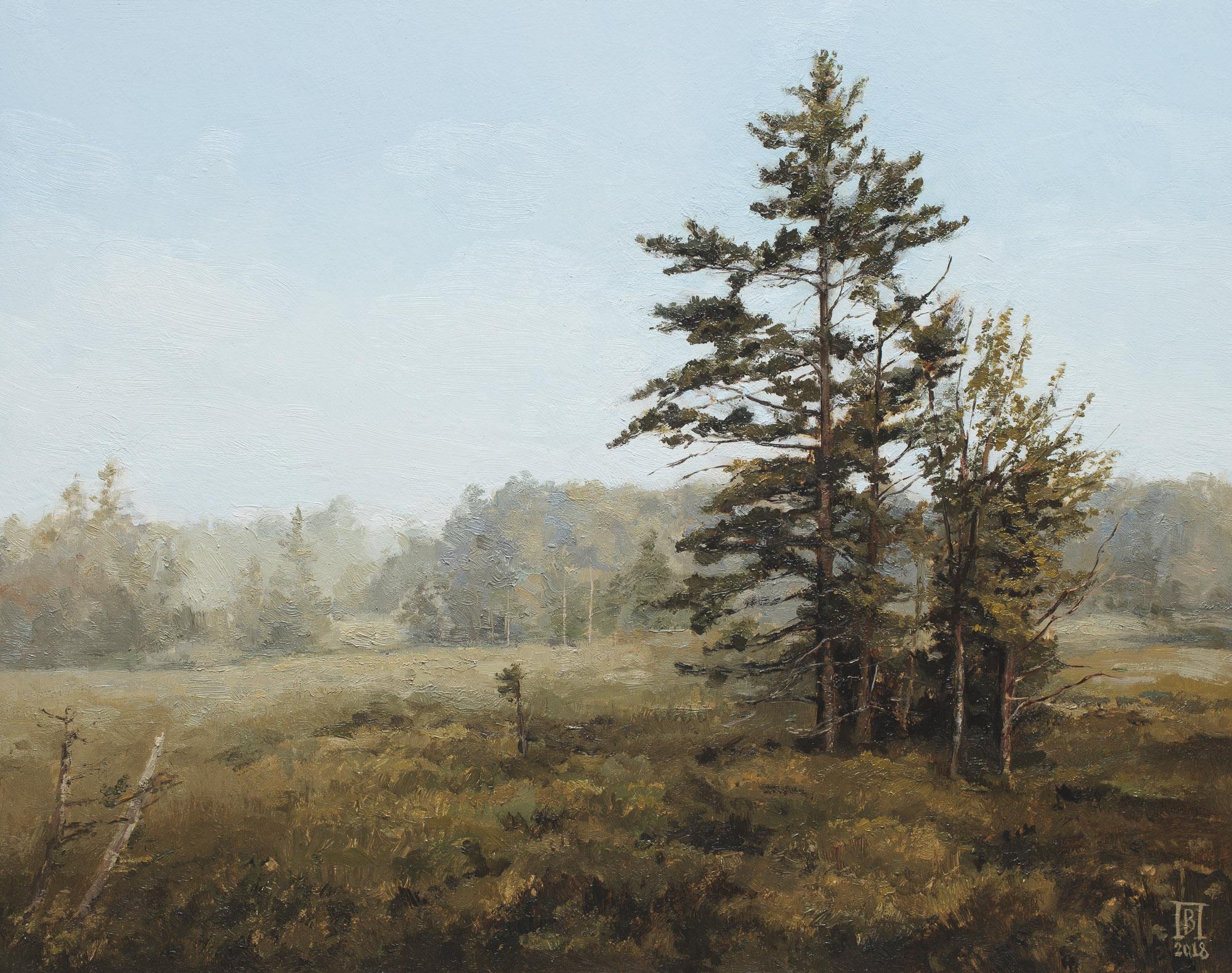 V. Pozhidayev-Pines in blueberry field
