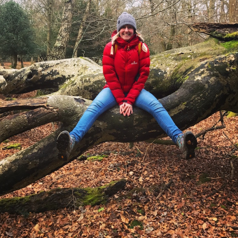 Clown spotting in the New Forest.