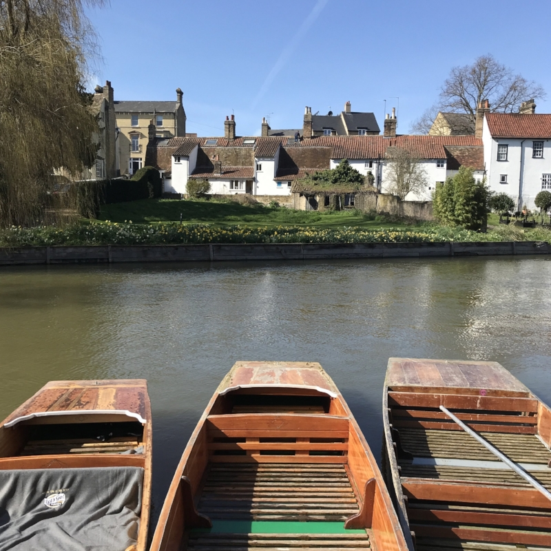 Punting in the sunshine