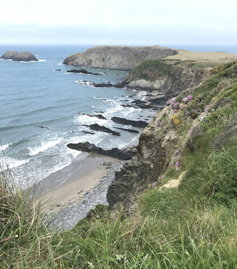 Costal path from Porthgain to Abereiddy