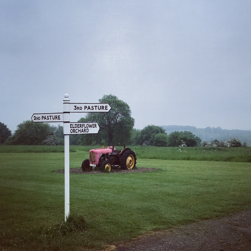 Back to The Cotswolds, to stay in a beautiful Elderflower Orchard at Thistledown Farm.