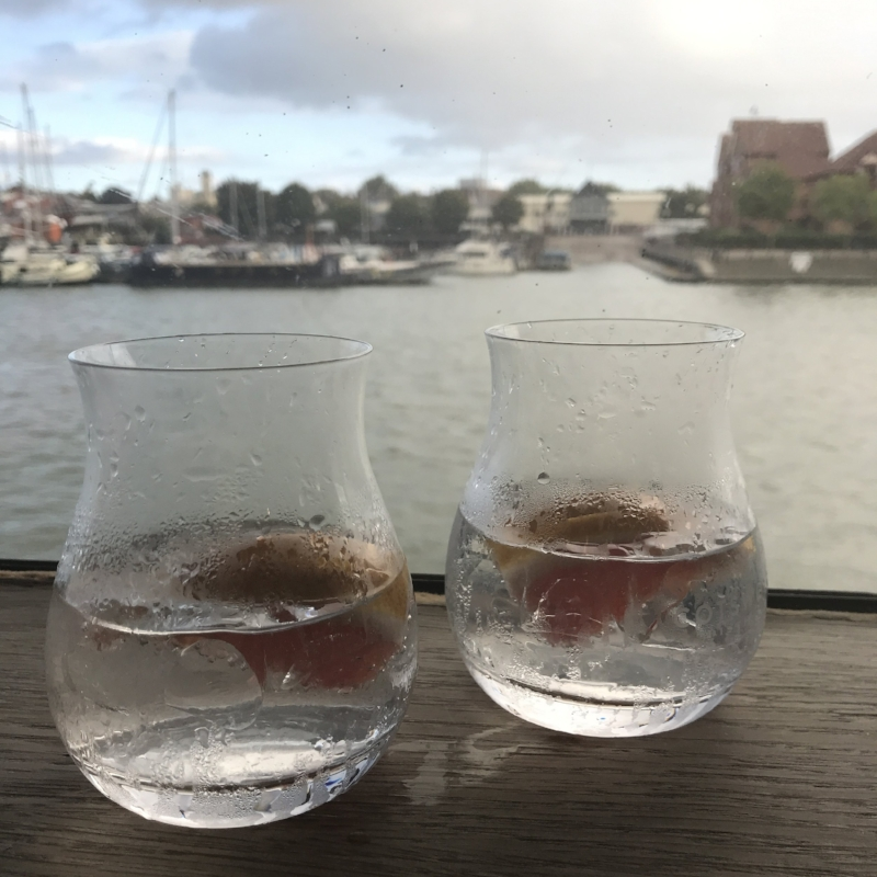 gin-cocktails.JPG