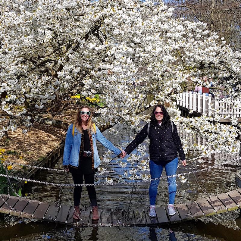 Blossom Buddies!
