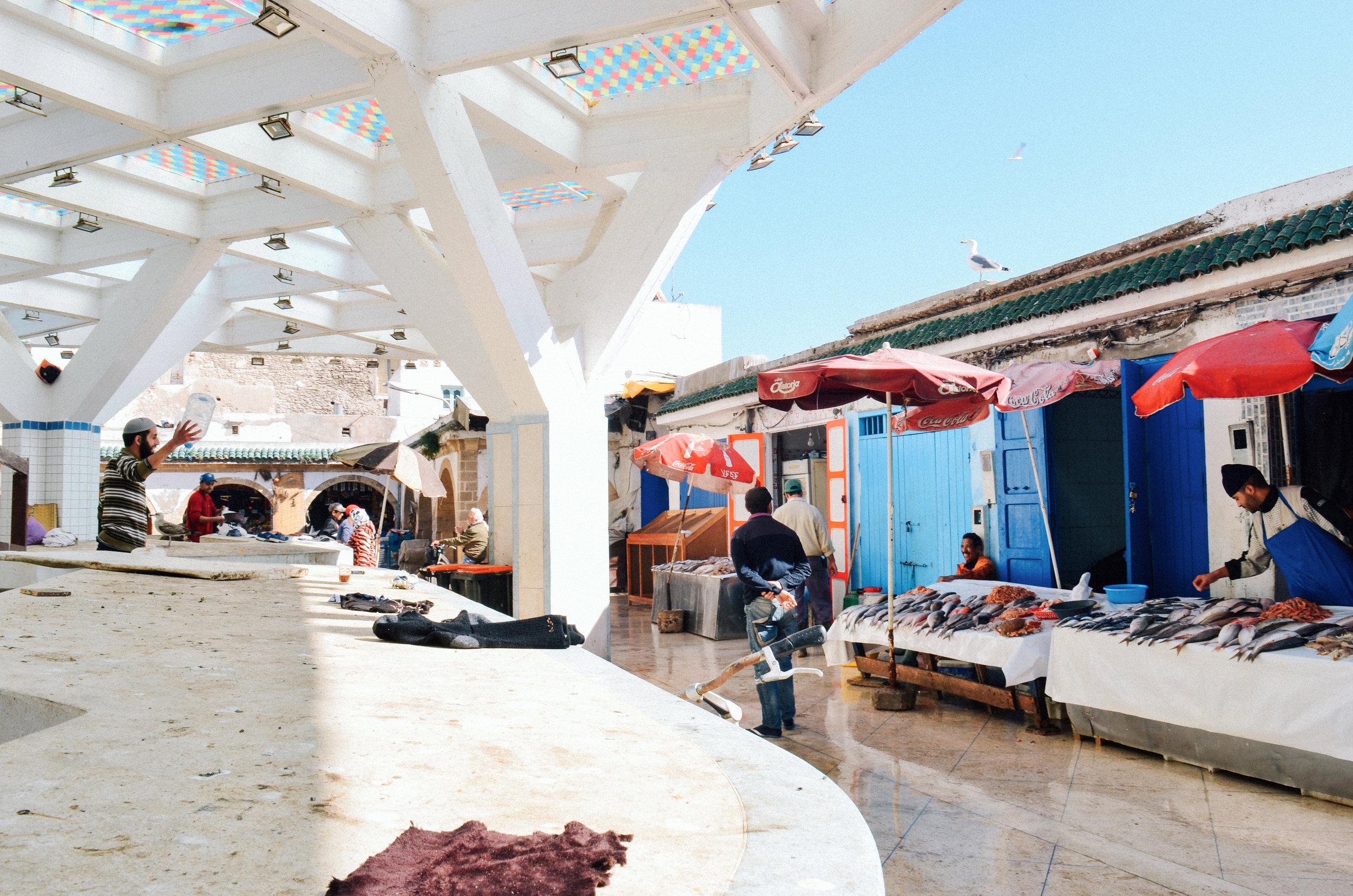 Essaouira Fish Souk © Sara Lima