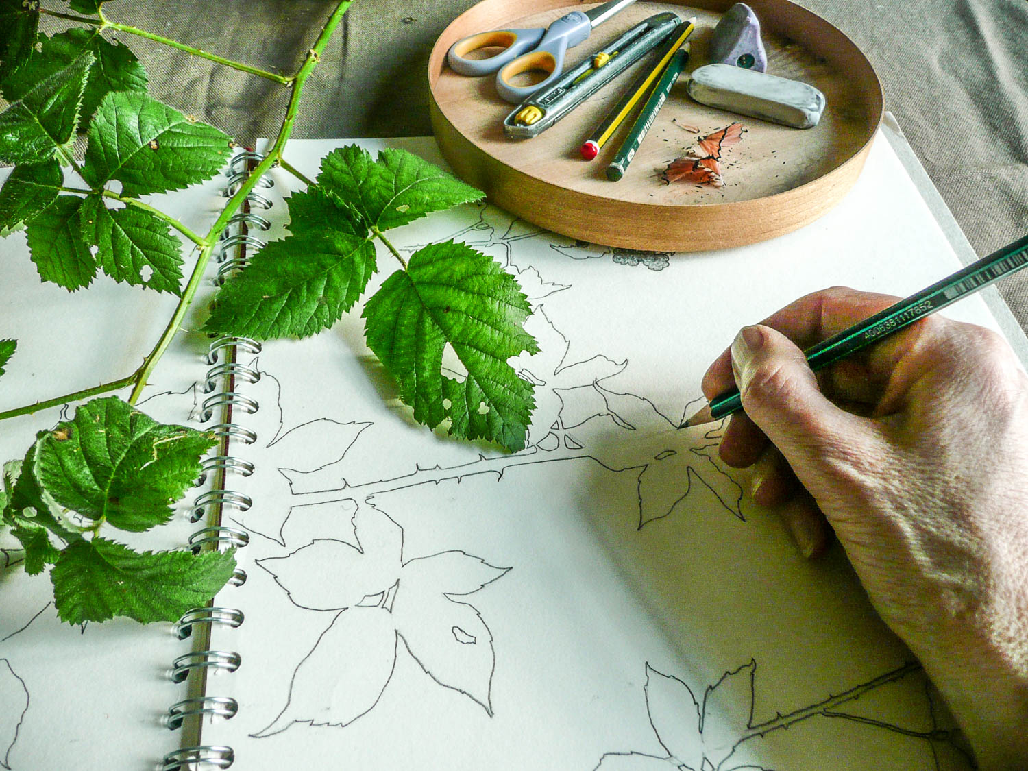Sketching | Helen Poremba Textile Art & Sewing Classes