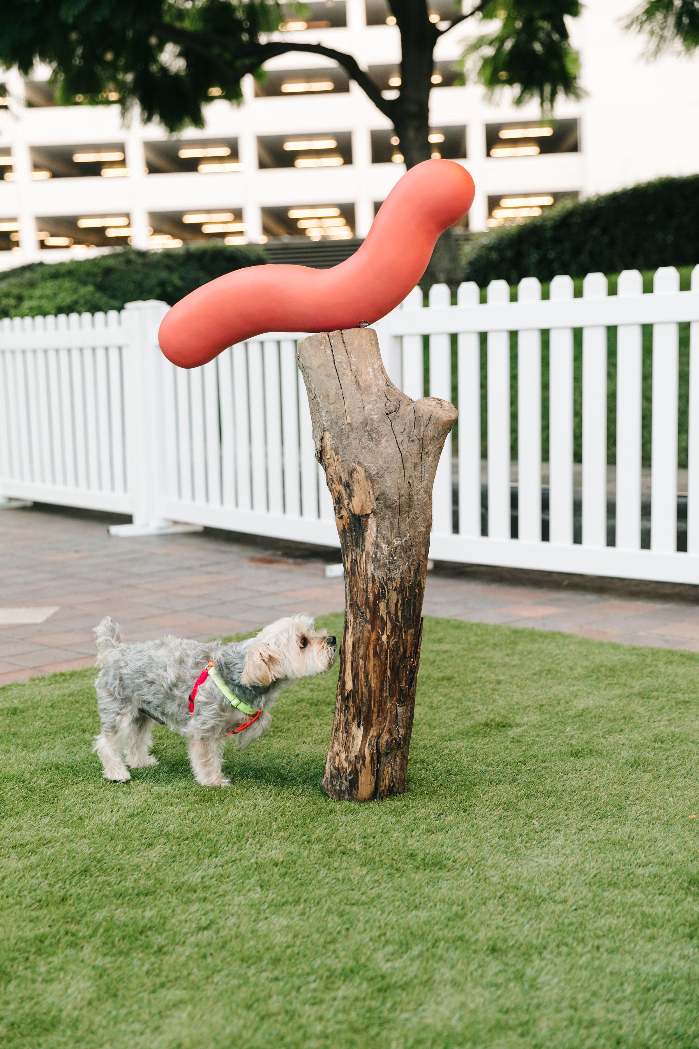 Pig Totem, Tucker Marder