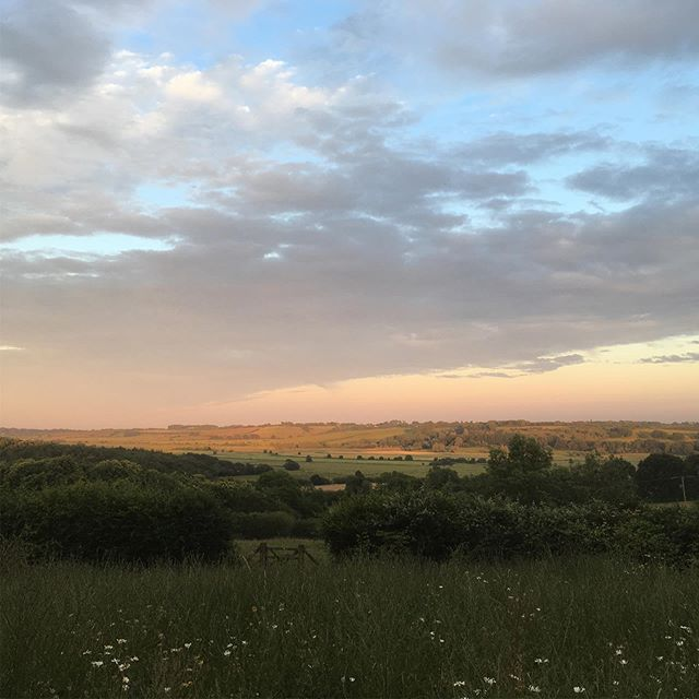 The Valley looks beautiful tonight@barefootyurts and barefootinthewoodsTo all my lovely guests who have come and seen this view in all its glory. And for those booked in I hope you enjoy #beautifulviews #summer#glamping#yurts#safarilodge#camping#summerevening #barefootyurts#barefootinthewoods