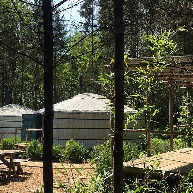 BOOK FOR 2020  Weekends getting booked up already. Beautiful yurts in a private location. Family stays, groups of friends or just a couple wanting a romantic break. Come and enjoy our little bit of Sussex tranquility. #barefootyurts#glamping#weeksaway#yurts#luxurycamping #getinearly #sussex#rye
