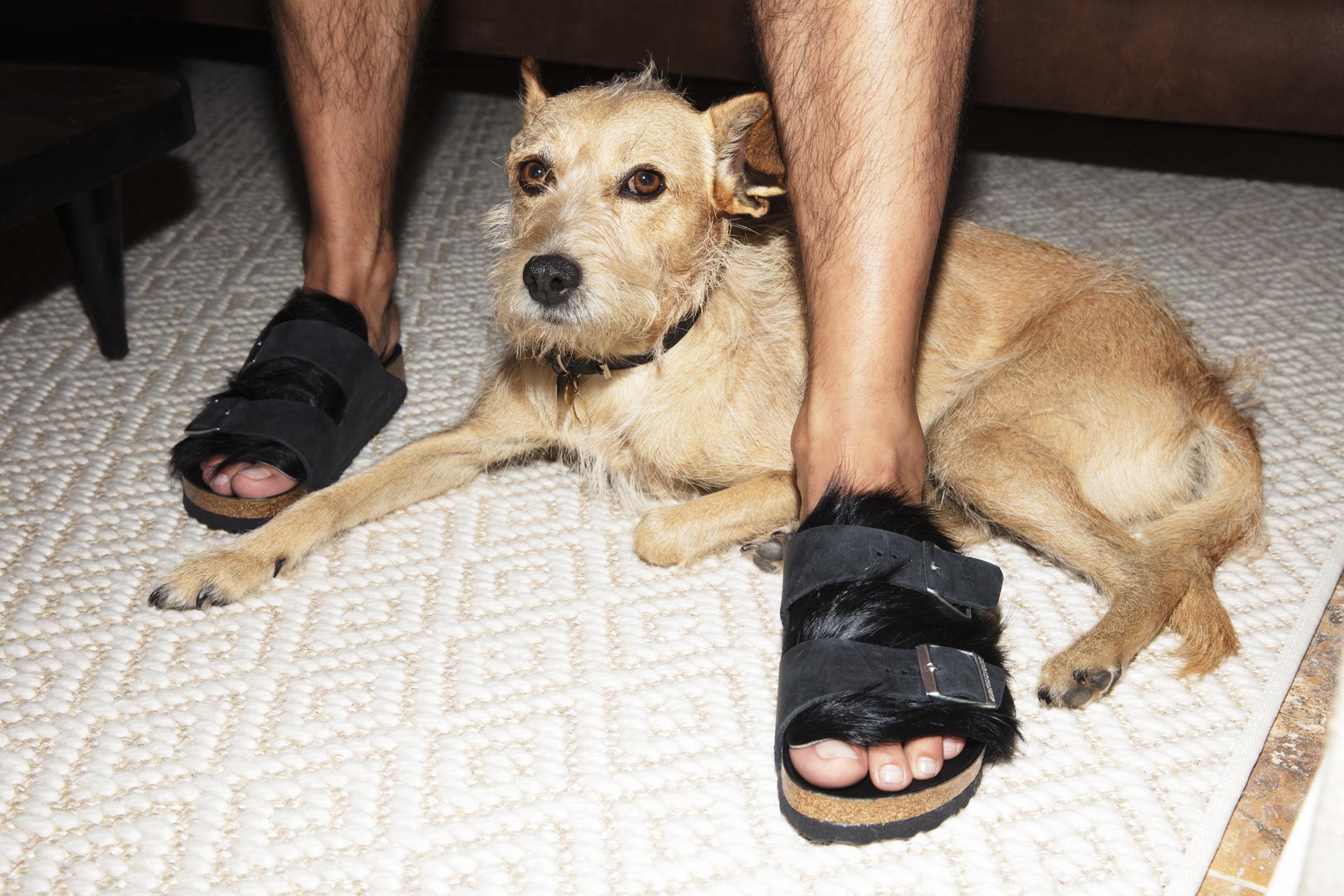 Igor viste sandalias de  BIRKENSTOCK .
