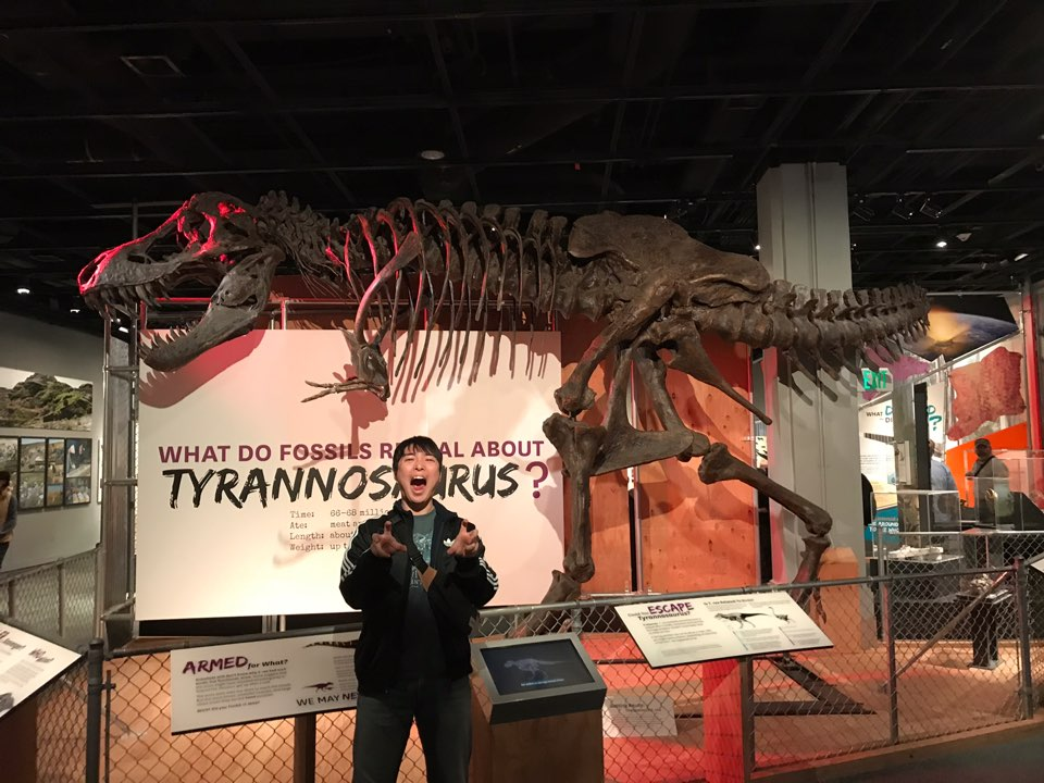 WashingtonNaturalHistoryMuseum.jpg