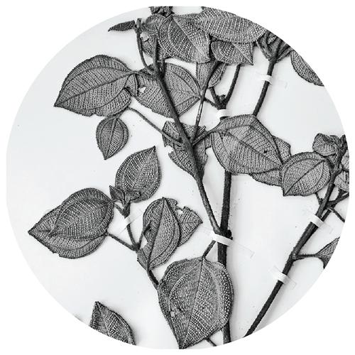 herb_circle-3_500x500.png