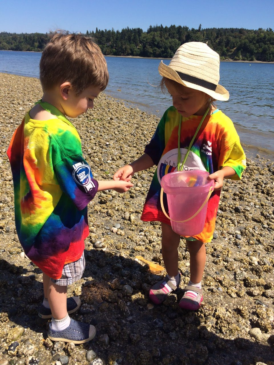 Mini Campers exploring tide pools at waterfront