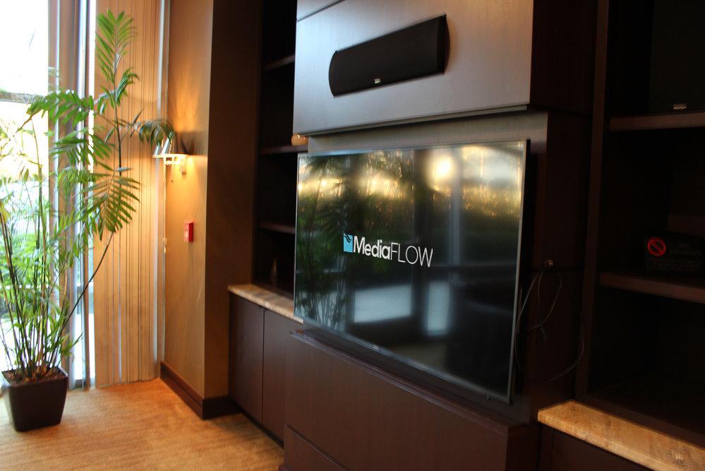 Media room TVs