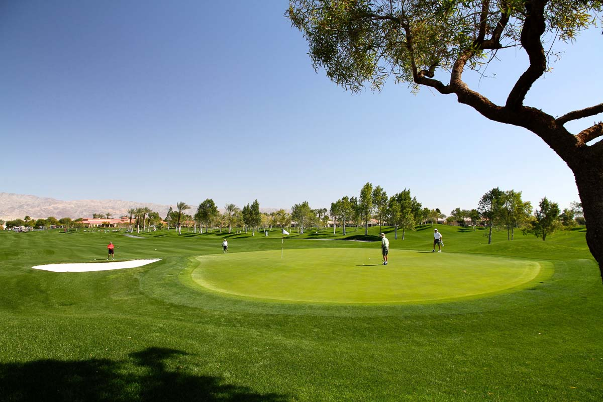 Indio Golf Real Estate