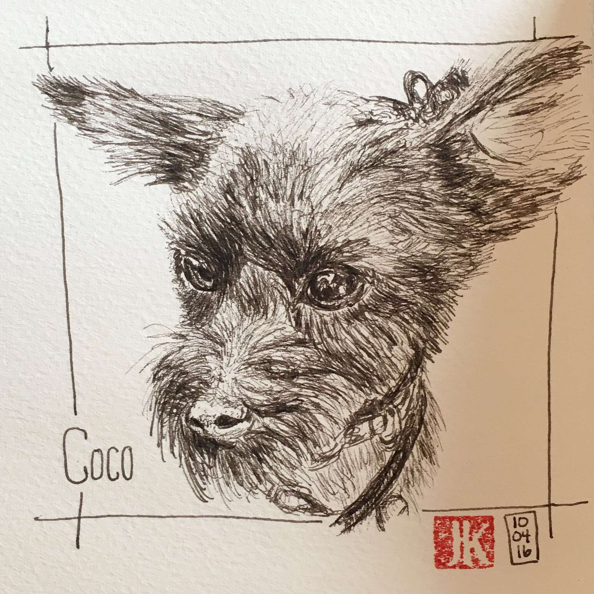 Practicing my hatching skills with a drawing of my dog, Coco