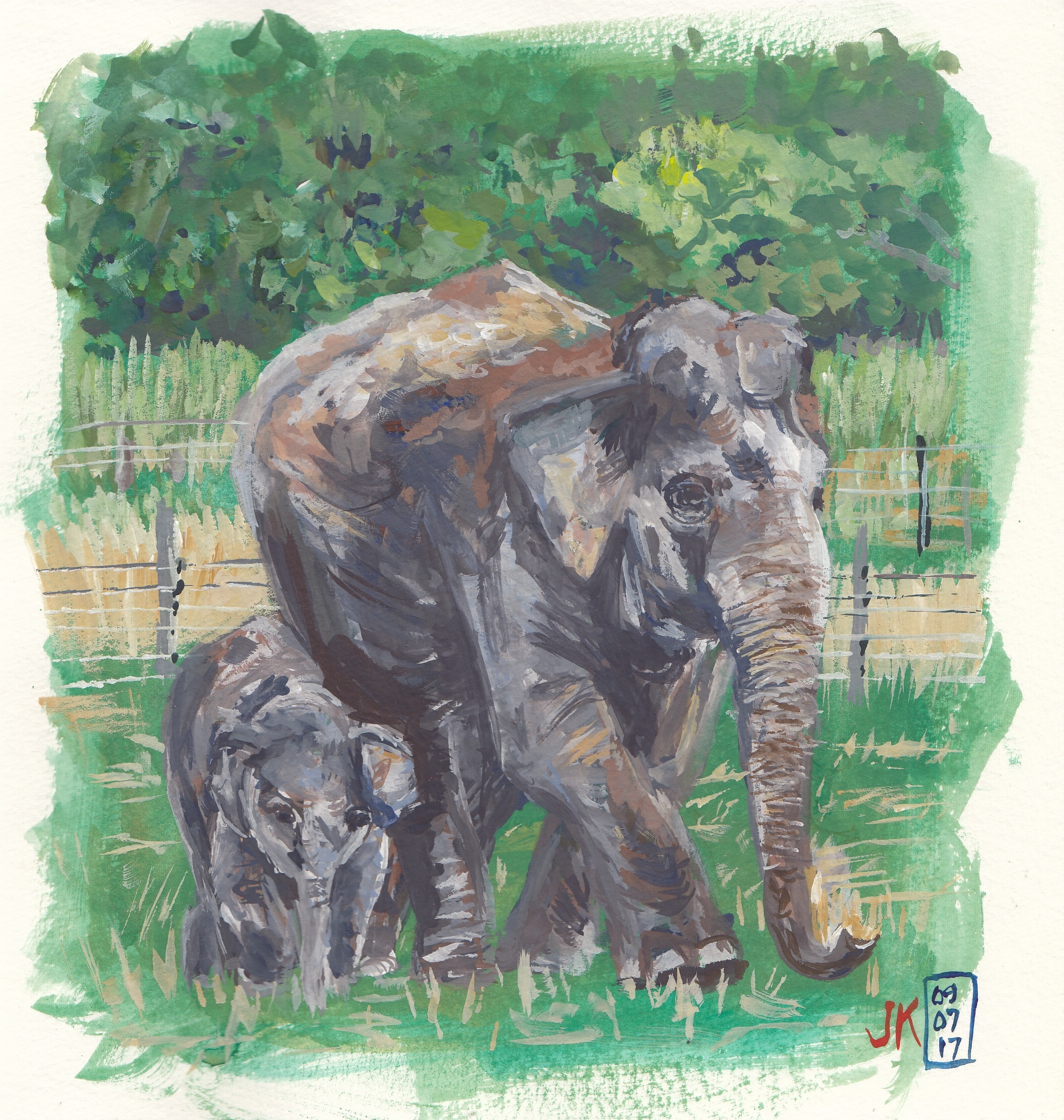 Elephants from Sktchy