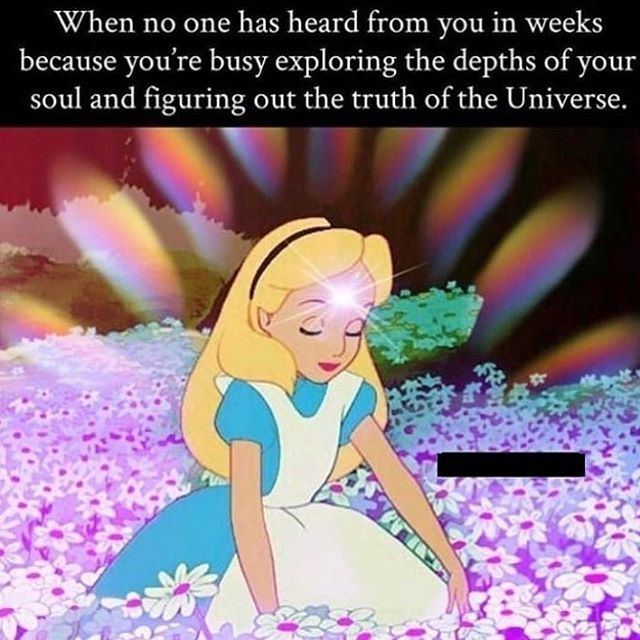 I'm a little like that myself! How about you? #justinchasemullins #psychic #medium #meditation #motivationalquotes #travelchannel #successquotes #success #inspiration #inspirationalquotes #empath  #yoga