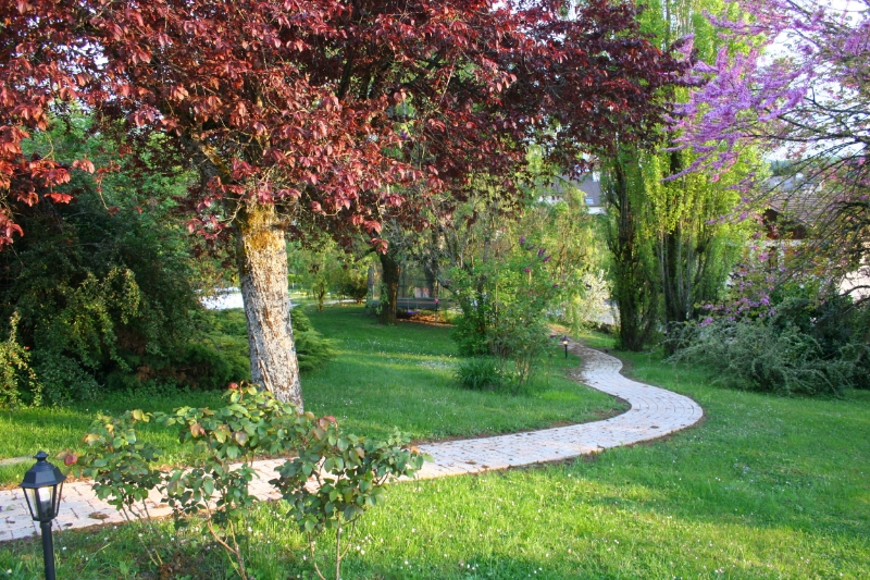 Garden path.JPG