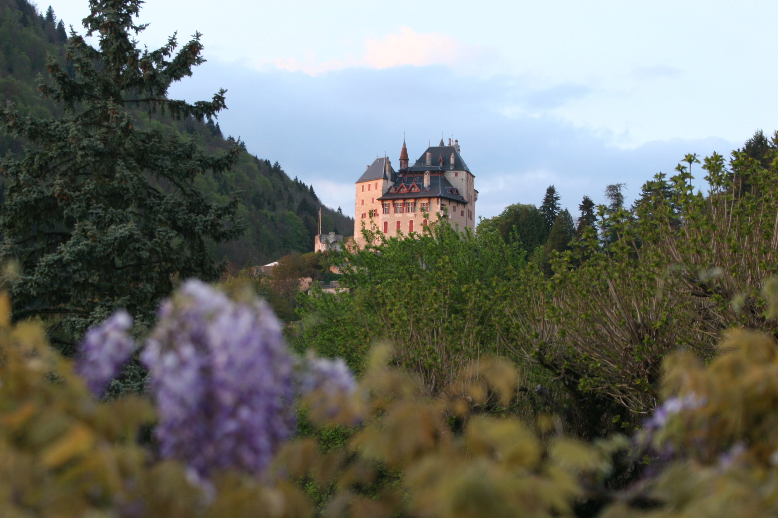 View of the Chateau Menthon-Saint-Bernard from the back deck.