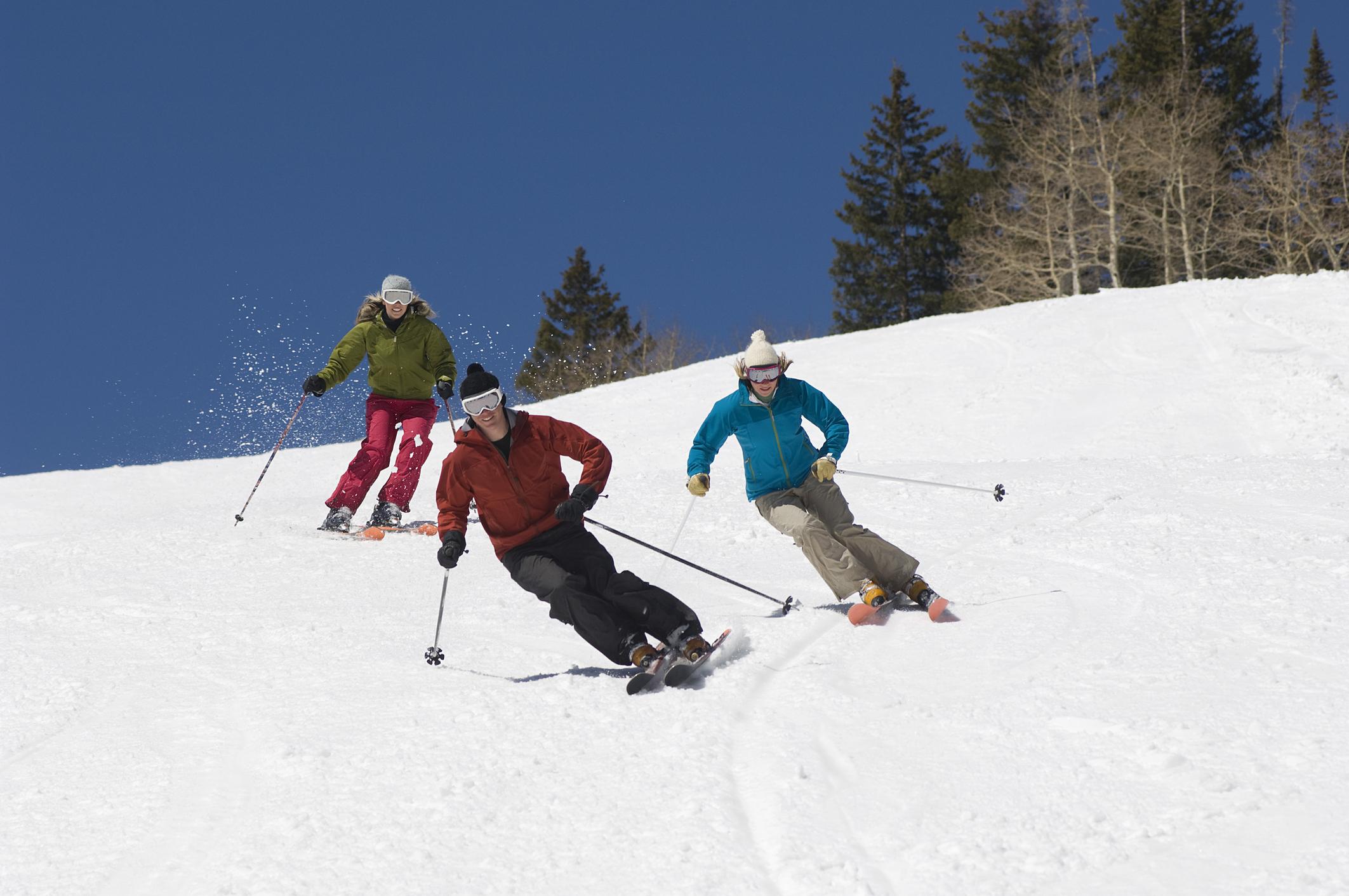 downhill skiers.jpeg