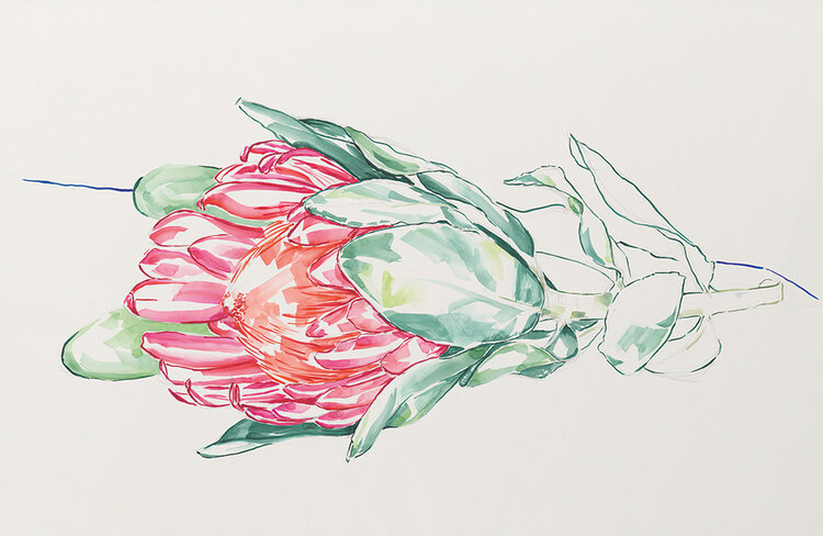 webb_wc-flower-001-vM31-cmyk-c20s-5 copy.jpg