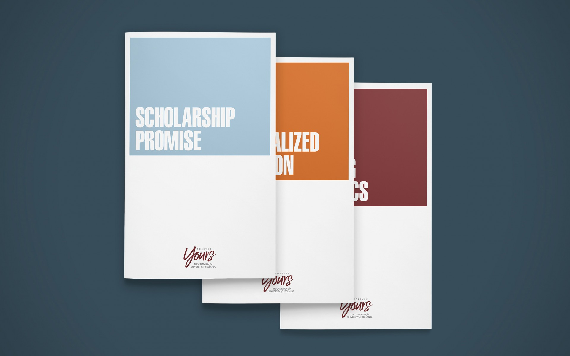 Various initiative brochures focused on specific donation opportunities at the school.