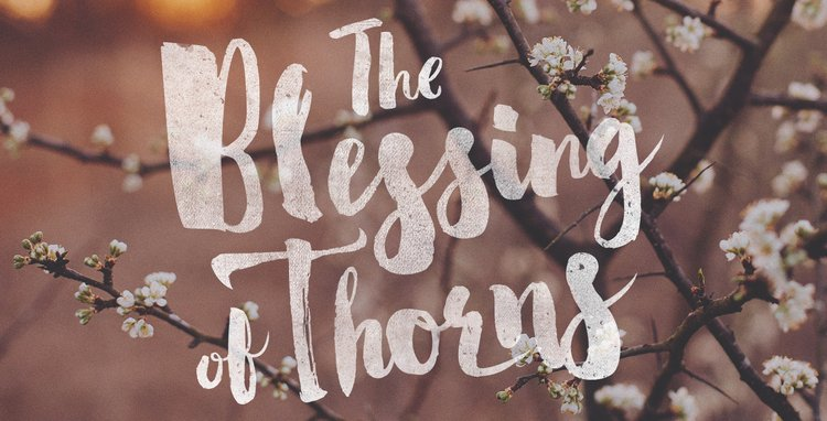 Photo Credit: https://www.reviveourhearts.com/series/the-blessing-of-thorns/