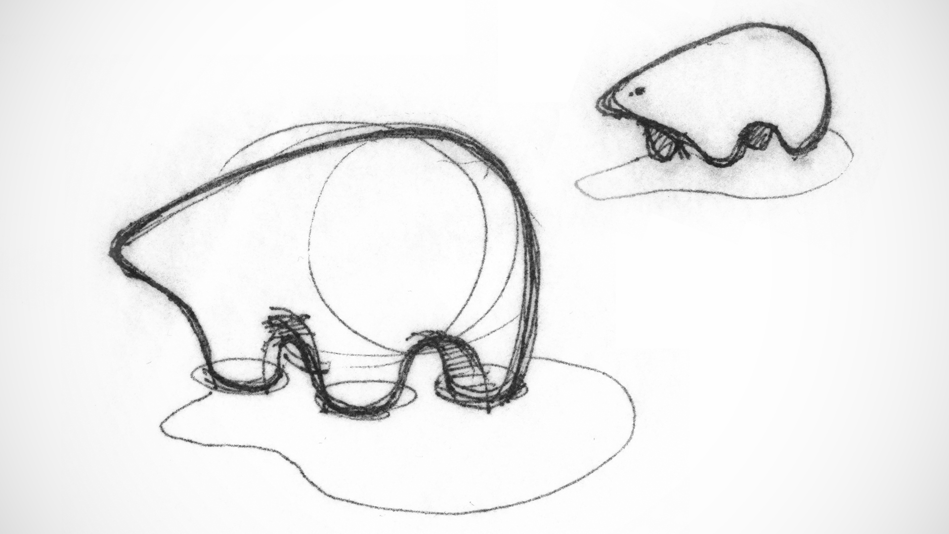 Umka-polar-bear-sketches_1600x900.jpg