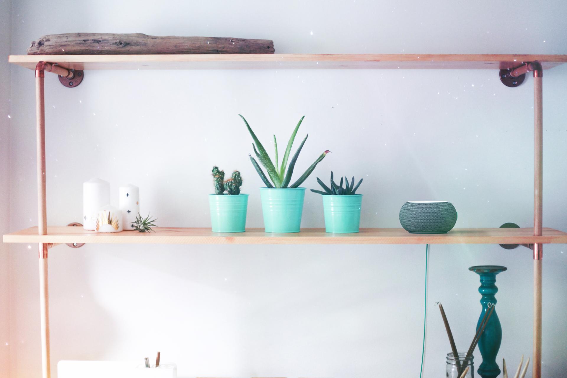 On-Shelf.jpg